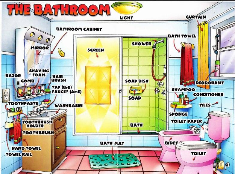 Dạy bé từ vựng tiếng Anh tên các đồ dùng trong phòng tắm