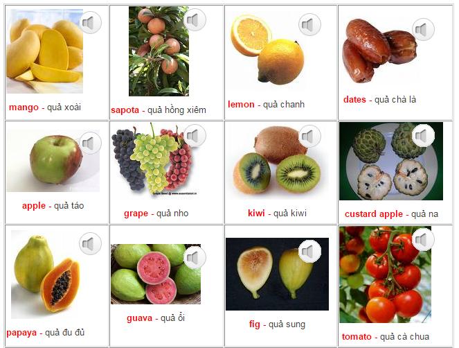 Học tiếng Anh lớp 1 với hình ảnh các loại quả