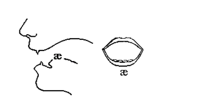Cách phát âm /æ/ (e bẹt) trong tiếng Anh