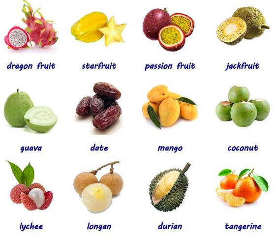 Trẻ lớp 5 học tiếng Anh qua hình ảnh các loại trái cây phần 2